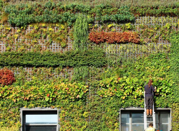 I giardini verticali più belli del mondo