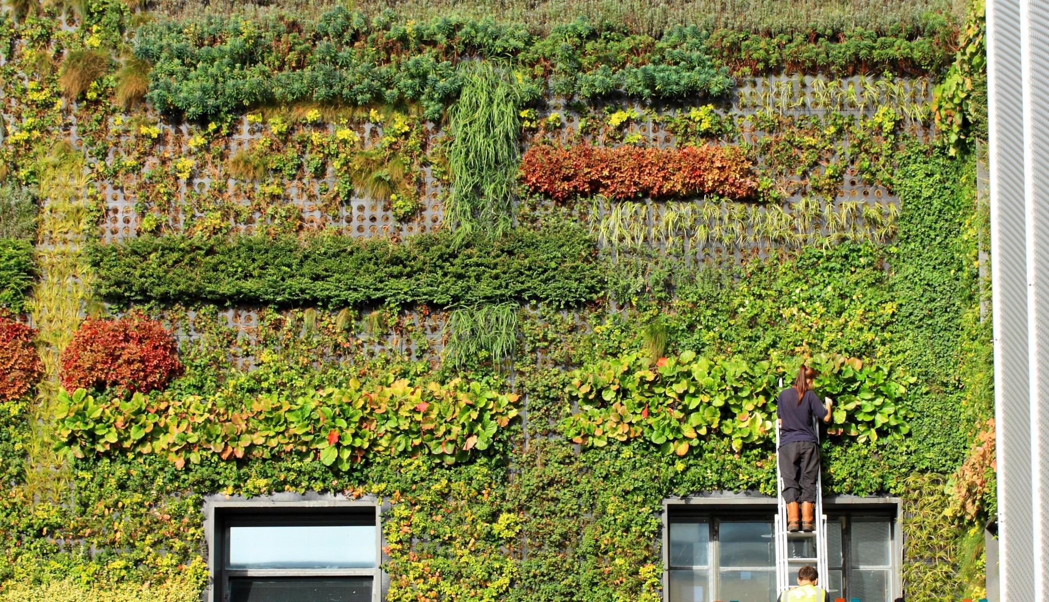 I giardini verticali pi belli del mondo thesignofcolor for Giardini verticali milano