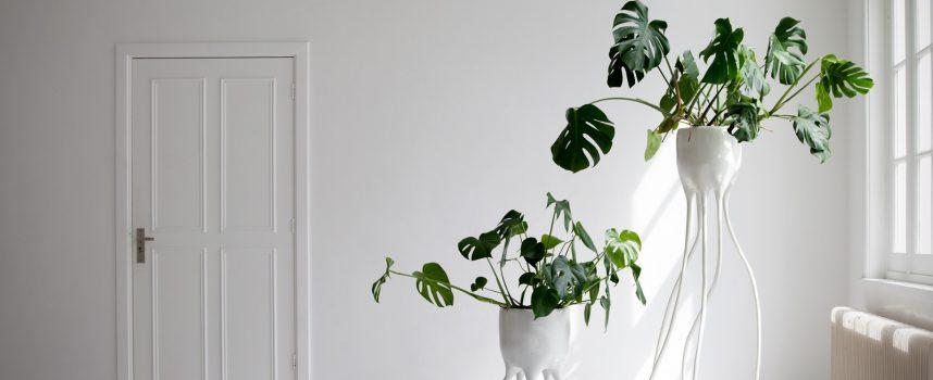 Vasi con radici: l'idea di Tim Van De Weerd