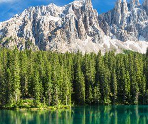 Trentino, rosso come le mele del sudtirol