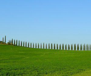 Toscana, verde come le sue colline