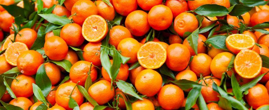 Sicilia, arancione come i suoi agrumi